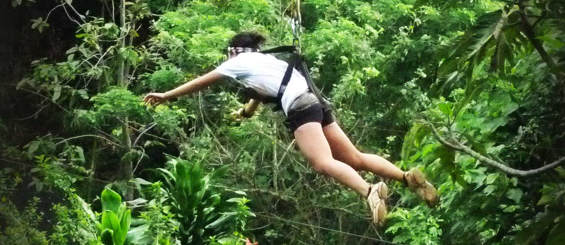 phillip's-sanctuary-zip-line
