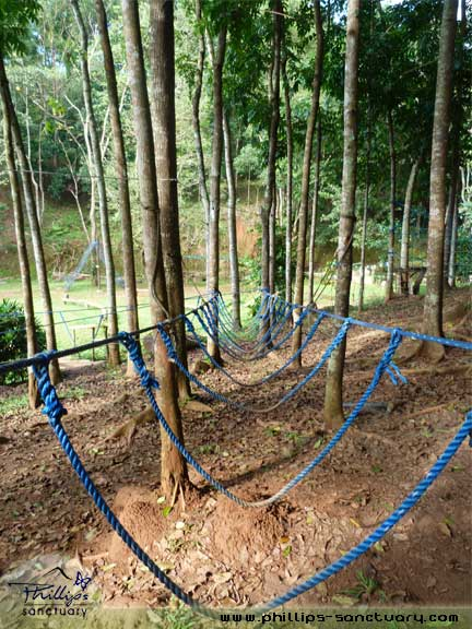 Team Building Venue Rope Courses